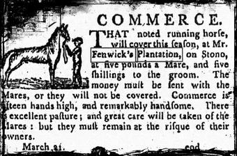 "The horse ""Commerce"" was advertised in the ""City Gazette"" in March 21, 1796, was standing at Stud at Edward Fenwick Jr's Stables on John's Island."
