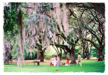 picnic in the ancient oaks johns island